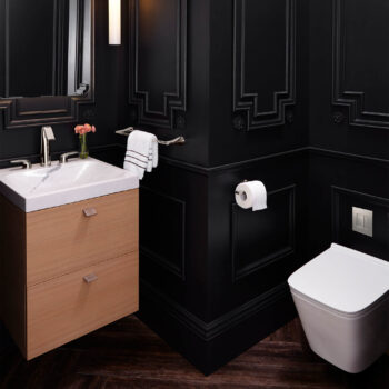 DXV D23040A000.415 - Modulus Wall-Mounted Elongated Toilet