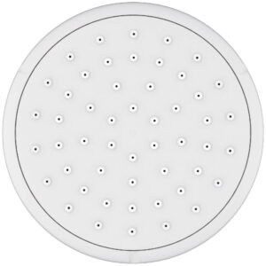 Grohe 26050001 - 100 Shower Head, 4