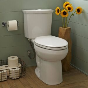 American Standard 2887218.020 - H2option Dual Flush El Combo Wht