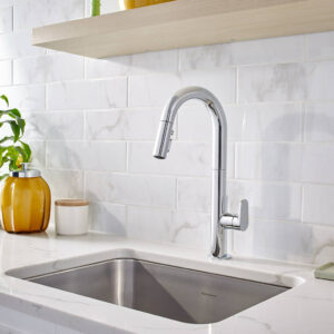 American Standard 4931300.002 - Beale Pull-Down Kitchen Faucet