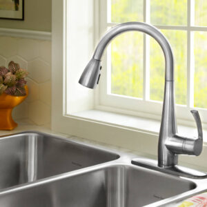 American Standard 4433300.002 - Quince 1-Handle Pull Down High-Arc Kitchen Faucet